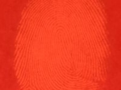 Visualization of fingermarks developed using 1,2 Indandione
