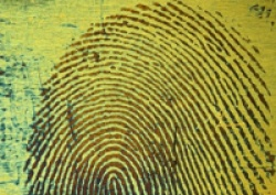 Foster and Freeman Licence Innovative New Technology to Recover 'Impossible' Fingerprints