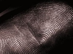 Foster + Freeman announce further innovations in fingerprint detection